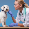 VeterinaryNursingcourse