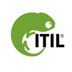 ITIL® Intermediate Level – Planning, Protection & Optimisation (PPO) Training