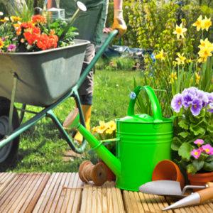 Level 2 Garden Design Diploma