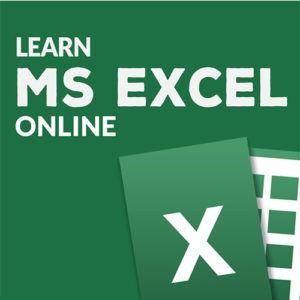 Excel 2010 Basic & Advanced For Dummies