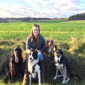 Level 2 International Pet Sitting / Dog Walking Diploma