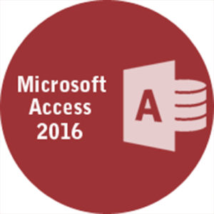 MS Access 2016 With Exam